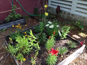 One of the raised flower beds.