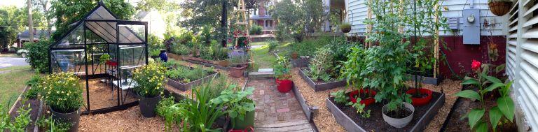 A garden panorama.