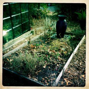 The sinking herb garden.