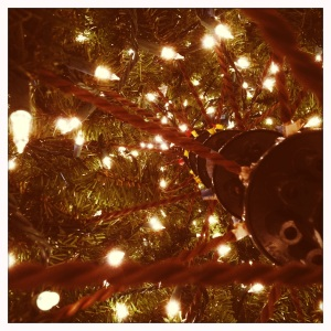 From inside and underneath the tree.