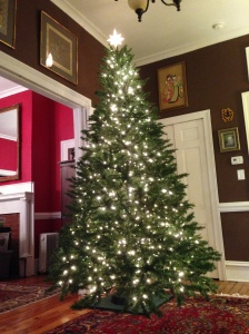 The tree and lights have been completed!