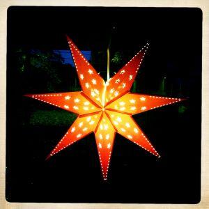 Swedish Star.