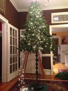 Slowly (I stress slowly) the tree comes together.