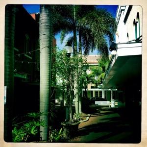 Hidden walks in Fort Myers, Florida.