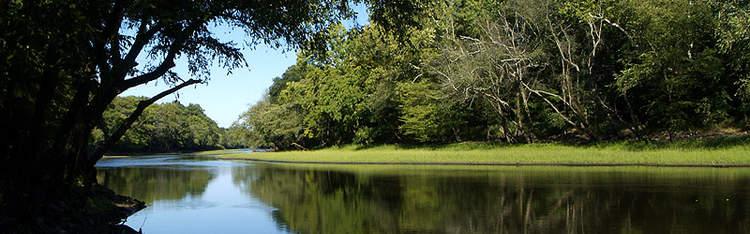 The Tar River, Tarboro, North Carolina.