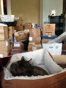 Boxes, boxes.
