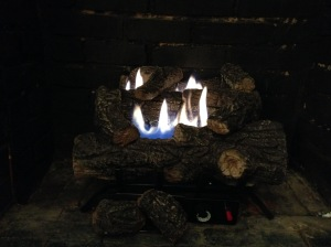 Firelogs installed and on!