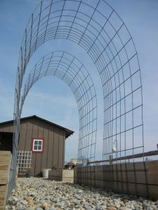 Arched trellis made from cattle fencing. (Imagine found on Pinterest.)