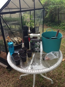 Temporary potting table.