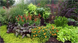 Another example of a combination garden. (Found on Pintrest.)