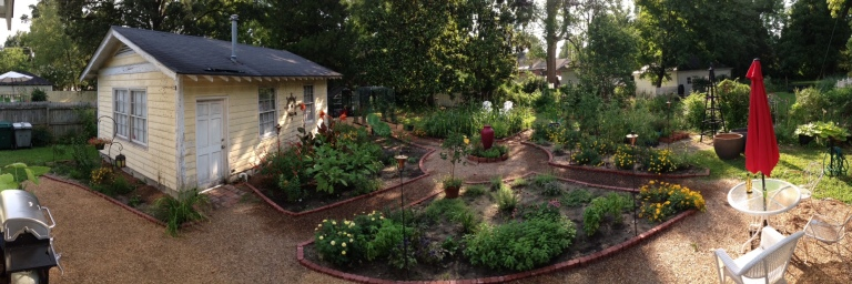 Potager panoramic 29 July 2015.