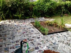 Thick layer of newsprint.