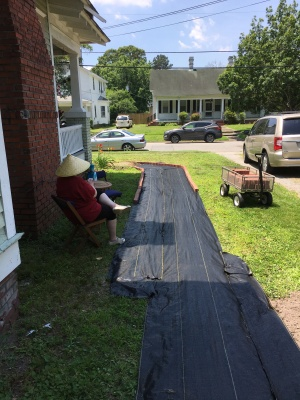building the path2